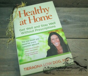 Healthy at Home Get Well and Stay Well Without Prescriptons by Tieraona Low Dog