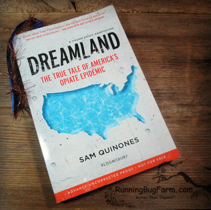 Review of Dreamland YA edition.