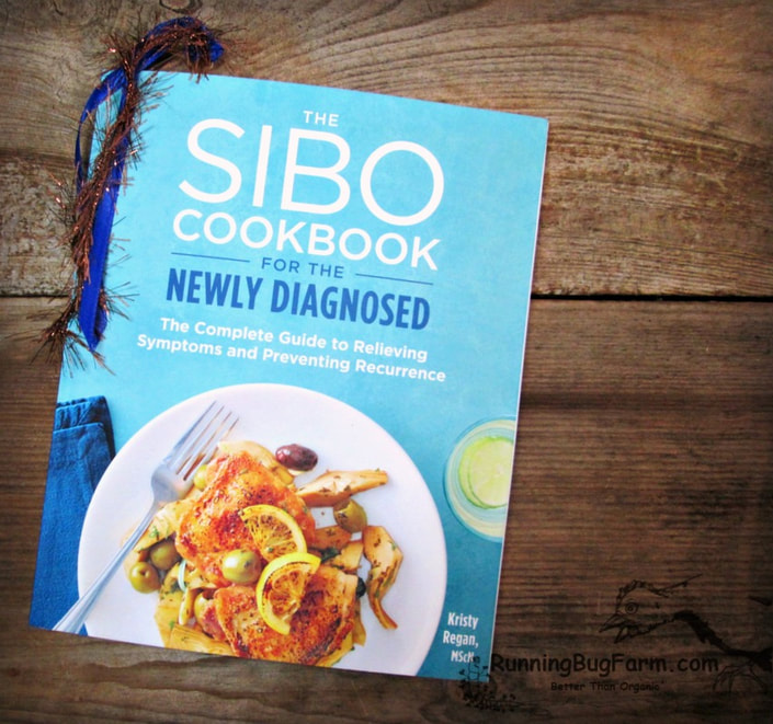 Review of 'The SIBO Cookbook for the Newly Diagnosed' by an Eco farm gal who has Endo.