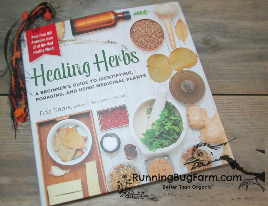 Running Bug Farm book review of Healing Herbs a Beginner's Guide to Identifying, Foraging, and Using Medicinal Plants by Tina Sams