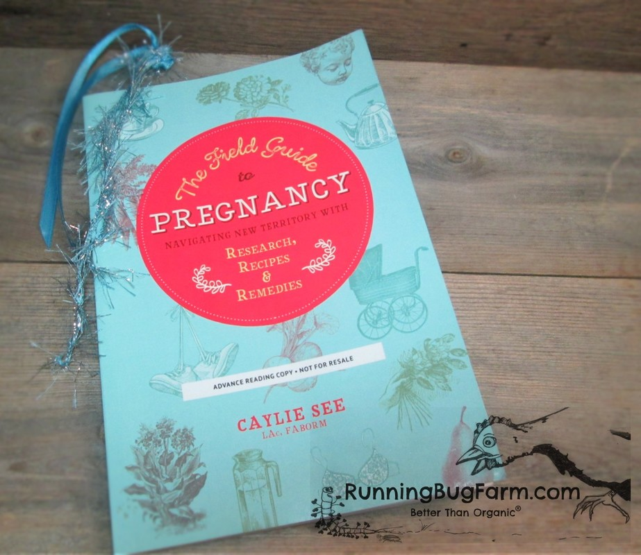 It can be tough to figure which books to get when you are expecting your first child.  We review both conventional and holistic books to help you choose.