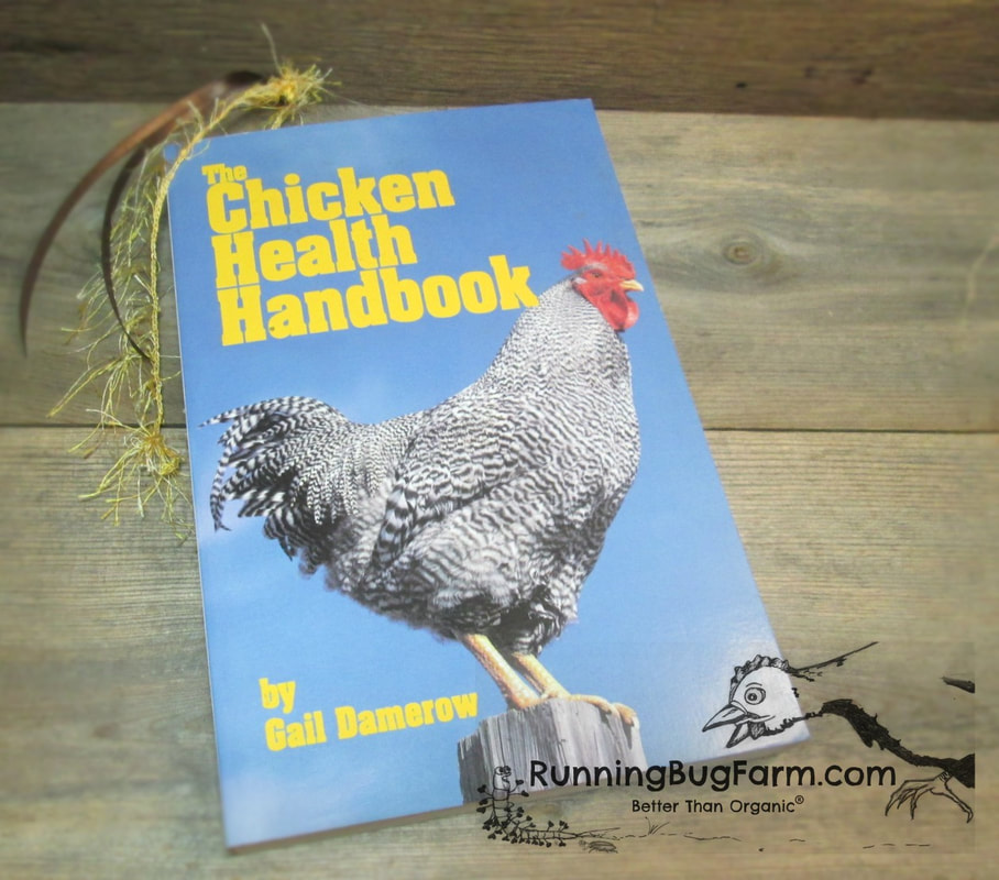 Raising chickens can be a lot of fun, but what do you do when things go wrong?  There are some very good reference books available, but how do you know which to chose?  We've done the work for you, providing you with basic details for books we ourselves use and recommend.