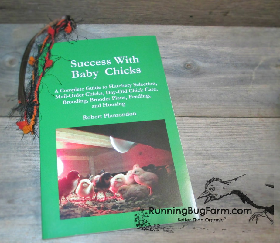 Chickens are known as the gateway drug of getting back to the land.  If you are thinking about taking the leap, let us help you find the right books so you get it right the first time.   From raising chicks for the first time or having a flock, we have a handful of books we personally use on our farm that we think are invaluable.