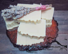 Learn how to make your own lavender goats milk soap using nothing but organic natural non gmo ingrdients.